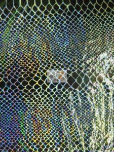 Iridescent Snake Spandex Fabric Metallic Black